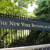 A new restaurant in New York's Botanical Garden